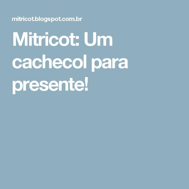 Mitricot: Um cachecol para presente!