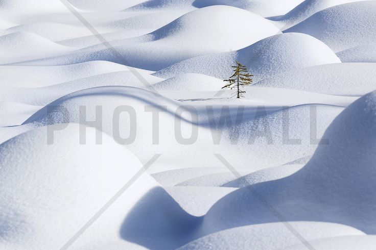 Snow Waves - Fototapeter & Tapeter - Photowall
