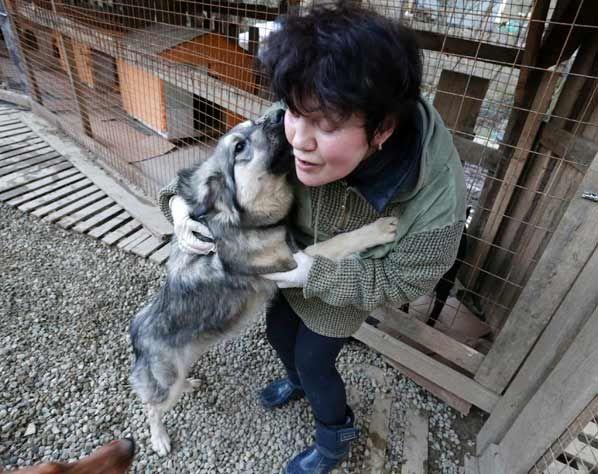 De Russische miljardair Oleg Deripaska kon het geweld tegen zwerfhonden in Sotsji niet meer aanzien en bouwde een privé-opvang voor de honden. Naar schatting zijn zo'n 7000 zwerfhonden slachtoffer geworden van gif en vallen nadat de ongediertebestrijding de opdracht kreeg de straten zwerfhondvrij te maken voor de Olympische Spelen. Deripaska heeft in zijn asiel al ruim 140 honden opgevangen en een aantal heeft zelfs een nieuw baasje gevonden.