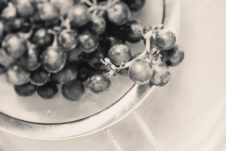"""Om druvor och vinproduktion - Olika sorters druvor har olika egenskaper och ger därför olika smaker på vinerna. Om klimatet är för kallt får druvorna svårt att mogna och får för låg sockerhalt. Om klimatet är för varmt sjunker syrahalten och vinet blir """"syltigare"""" och en del smaker går förlorade.  Normalt tar det cirka hundra dagar från blomningen på våren till skörden på hösten.  #vin #druvor"""