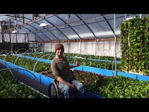 278 best images about solar greenhouse and aquaponics on for Closed loop gardening
