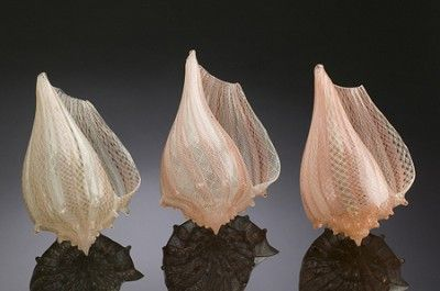 17 best glass shells images on pinterest shells conch for Silkwood glass