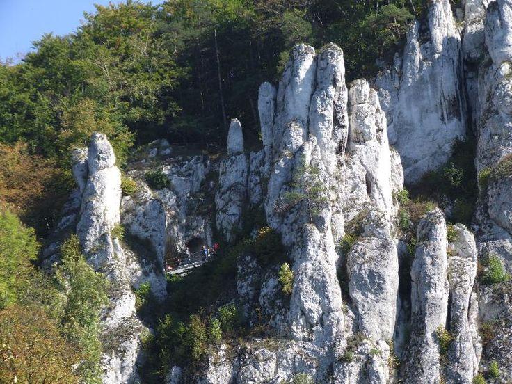Kalksteinformationen im Nationalpark Ojców