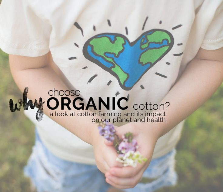 Why Choose Organic Cotton? A look at cotton farming and its impacts on our planet and health. #organic #organiccotton #ecofriendly #ethicallymade #blog