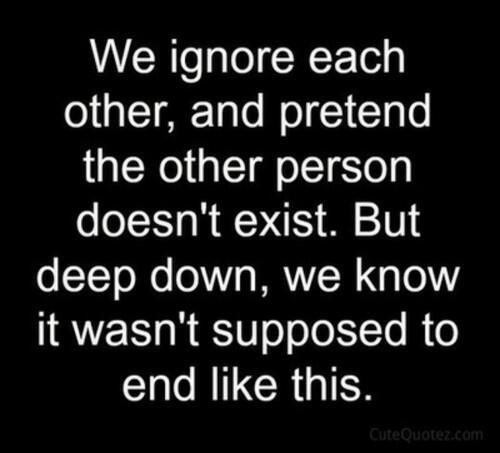 """We Ignore Each Other, And Pretend The Other Person Doesn"