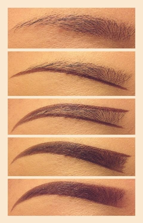 eyebrows                                                       …