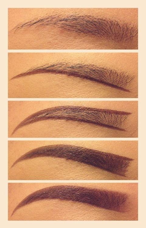 eyebrows                                                       …
