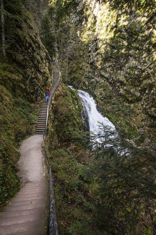 Trail to the top of Allerheiligen Waterfall with lots of up and down stairs -- Loved visiting here. At the top of the waterfall is a ruined abbey. Black Forest, Germany.:
