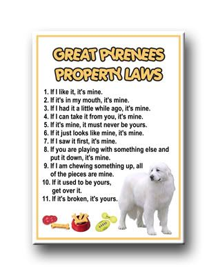 Great Pyrenees property laws - and this is really how it is because they do what they want ;)