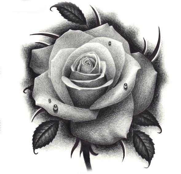Pink Tattoo Tattoo Rose Flower Tattoos Realistic Rose Tattoo Rose Drawing Tattoo