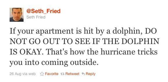 Hurricane tips:: Funny Things, Hurricane Tricks, Dolphins, Sneaky Hurricane, Funny Quotes, Funny Stuff, Humor, Tricki Hurricane, Troll Hurricane