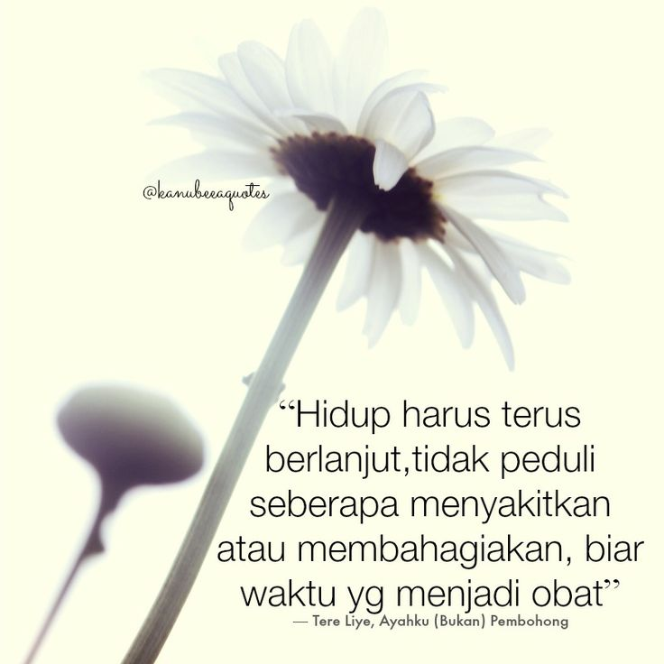 Tere Liye Quotes @kanubeeaquotes