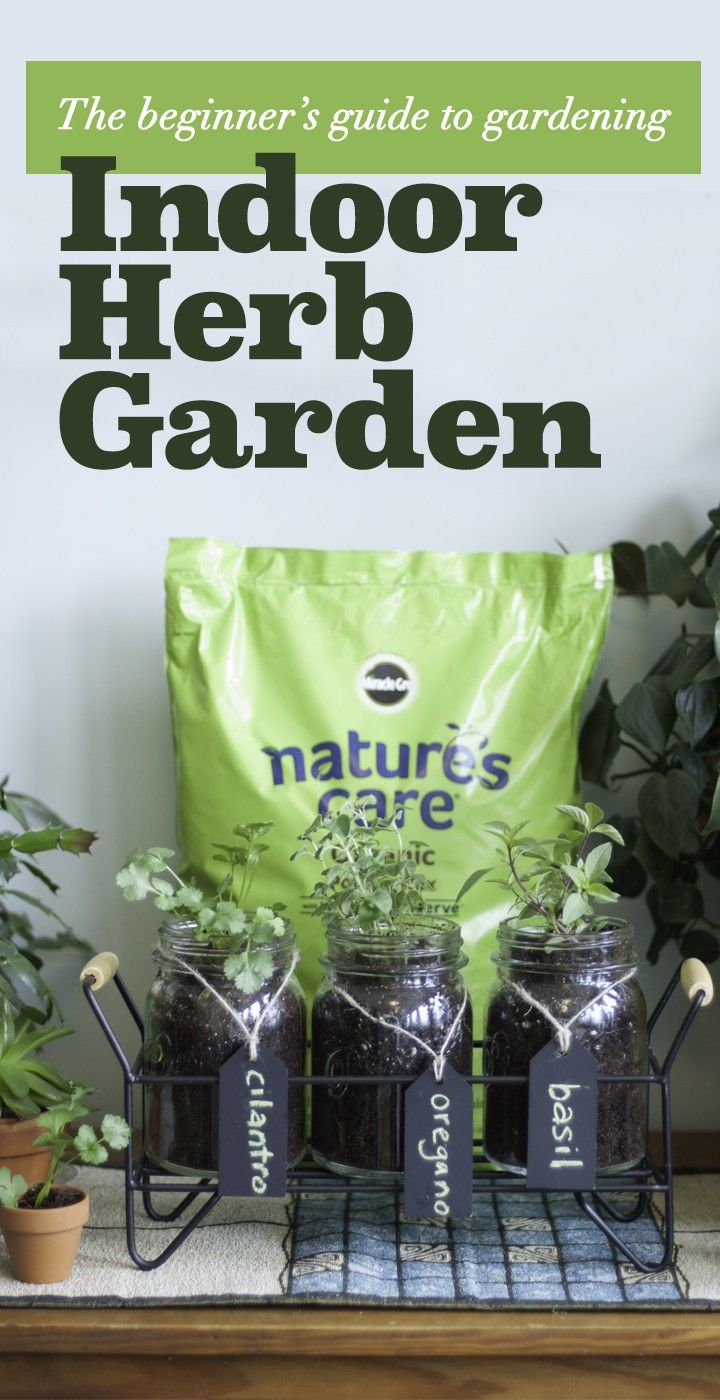 Grow your own food just like influencer Erin @efreedman with Nature's Care Organic Potting Mix in mason jars! To start, gather jars, cups or tiny pots for your seeds. Fill each 3/4 of the way full with Nature's Care Organic Potting Mix, add seeds, water, and place in a well-lit location. Feed every 7-14 days with Nature's Care Vegetable, Fruit & Flower Food Concentrate. Enjoy : )  #ad