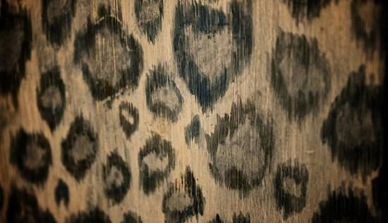 texture 7- Cheetah Print  Leopard Skin Textures