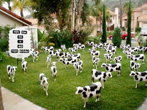 LOL How Would You Like To Wake Up THIS On Your Front Lawn Birthday Ornaments Signs