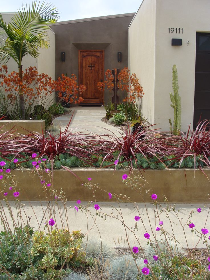1349 best images about palm springs style gardening in the Modern desert landscaping ideas