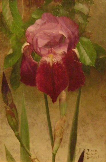 ❀ Blooming Brushwork ❀ - garden and still life flower paintings - Frank Vincent DuMond