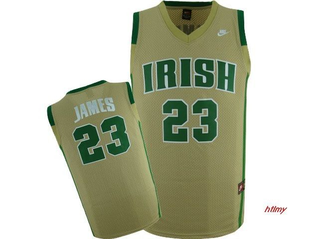 Irish High School (LeBron Janes #23)