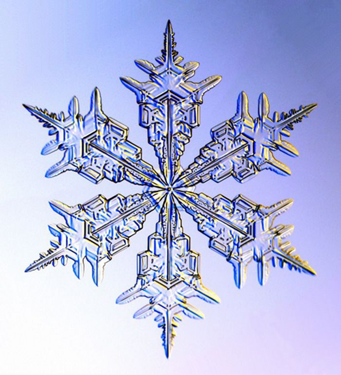we used this whole series of real snowflakes for the table numbers at our wedding... memories!