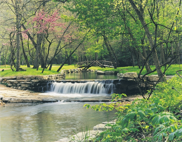 59 best images about dogwood canyon nature preserve for Dogwood canyon