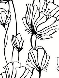 Large White and Black Flower Wallpaper BW28740 - Wallpaper & Border | Wallpaper-inc.com