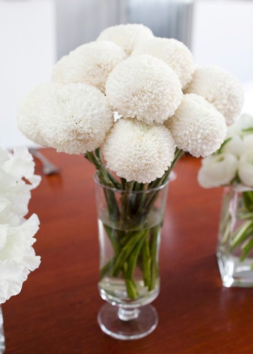 "White pom pins (White Lunar Buds - A member of the disbud chrysanthemum family.""  Are these ""football mums""?)"