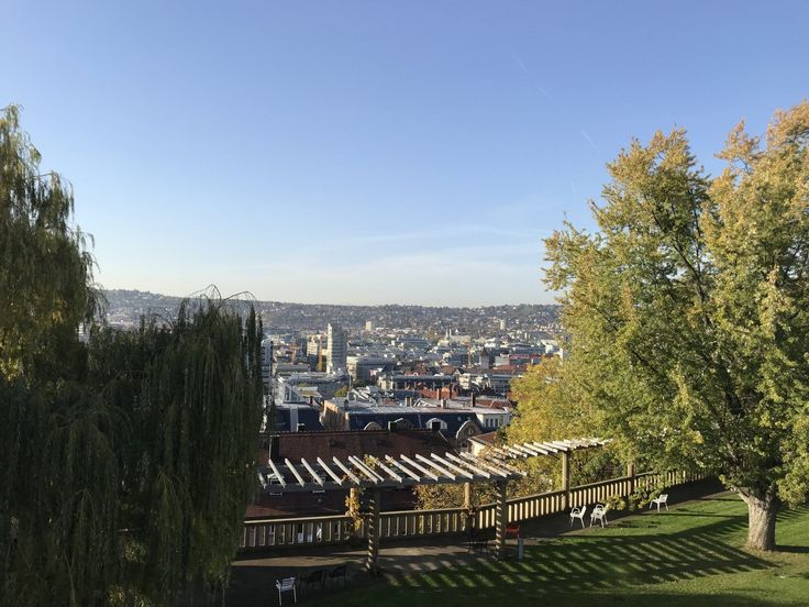 Garten Mieten Stuttgart In 2021 Garten Stuttgart Stuttgart Mohringen