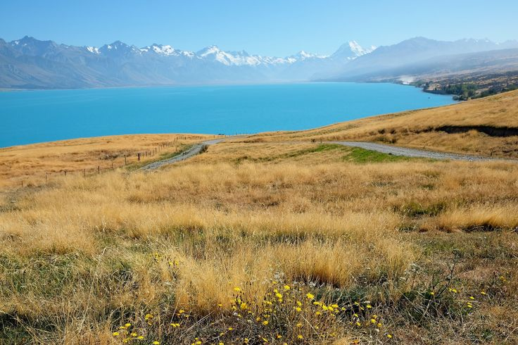 This one is from Carol Lyvers too. A stunning shot of the cobalt blue Lake Pukaki, and a hazy Aoraki/Mt Cook in the distance. Carol travelled on a 'Kiwi' in February.#adventuretravel#activeadventures#newzealand#hiking