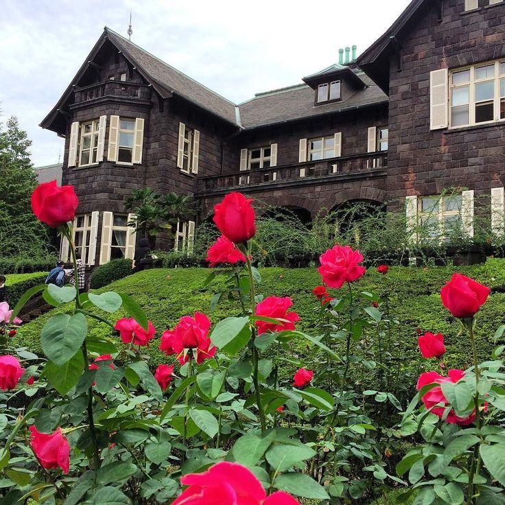 旧古河庭園のバラを見に行って来た先週までがイベント期間だったので盛りを過ぎたかと思ったがまだ大丈夫良い香りを味わうことができた#kyufurukawagardens #rose #tokyo