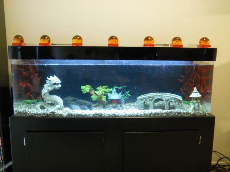 anime fish tank dragon ball z | turtle tank | Pinterest ...