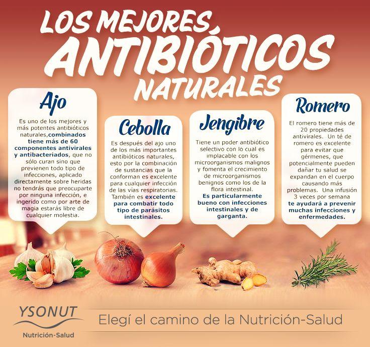 Los mejores #antibioticos #naturales – Laboratorios YsonutArgentina  Obtené mayor información sobre el Plan Nutricional de Aporte Normorproteico, ingresando en: http://www.ysonut.com.ar/   #ysonut #vidasana #sobrepeso #salud #cebolla #jengibre #romero #ajo