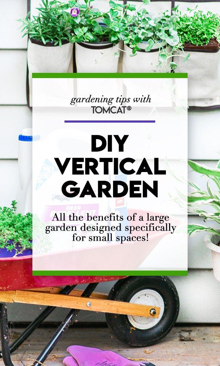 505 Best Images About Garden On Pinterest Gardens