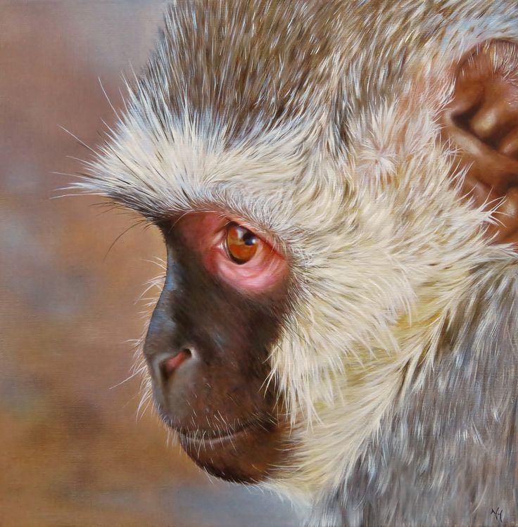 THE IMPISH - Vervet monkey, oil on canvas, 50x50
