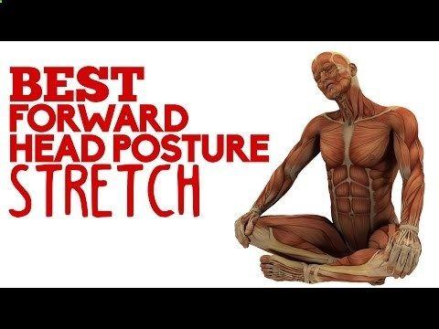 17 best ideas about head muscles on pinterest | shoulder, Muscles