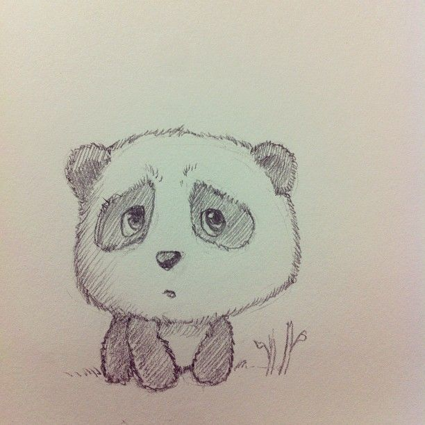 Cute panda drawing