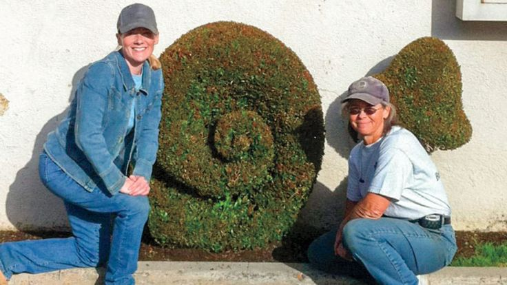 CAs Gardens | Meet the Topiary Artist Behind the Fox Lot's Green Bart Simpson - Over 34 years working on the studio lot, landscaper Kathy Jones has drawn Peter Chernin's ire, Steven Bochco's protection and Jim Gianopulos' praise for her fanciful fauna (ranging from penguins to 'Simpsons' characters).  Pictured: Actress Amy Landers (left) played a Bones character based on Jones (right).