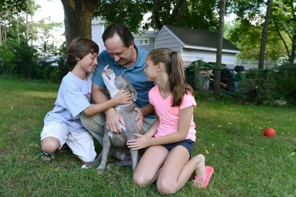 Pit bull adoptions increase as suburbanites consider a dog they previously ignored - The Boston Globe AWESOME article!