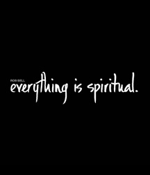 Everything is spiritual - Rob Bell (DVD)