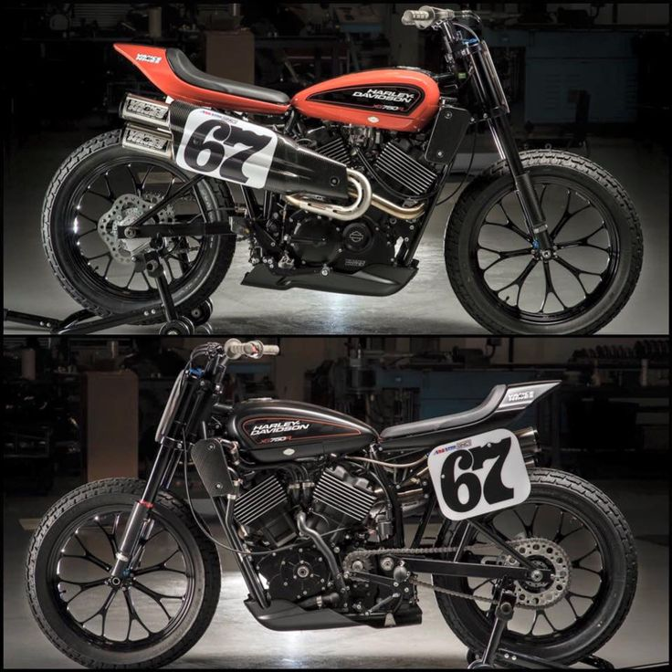 Sportster 1200 Flat Trackers.