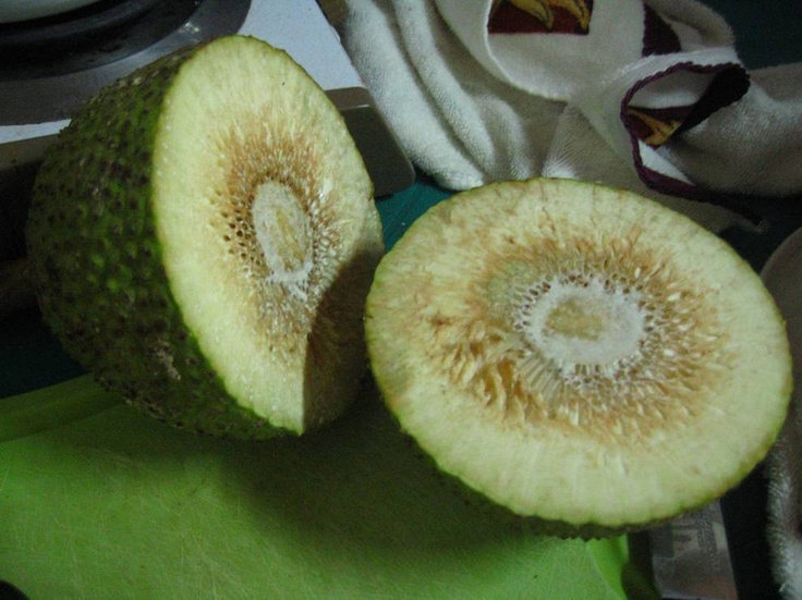 mazapan fruit - Honduras - soooo good fried Mazapan Fruit
