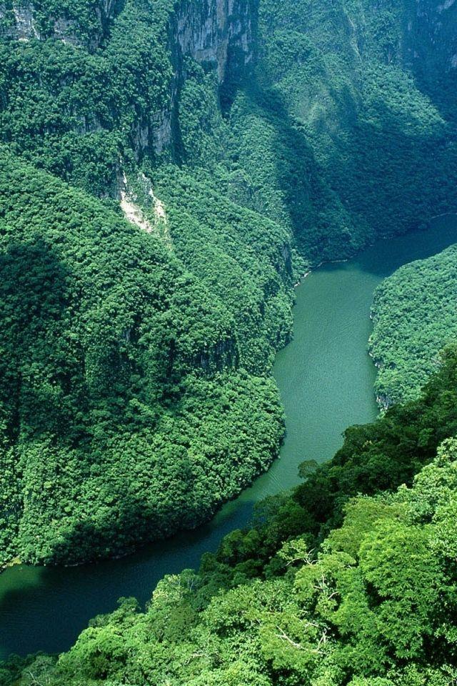Sumidero Canyon, Chiapas, Mexico                                                                                                                                                      Más
