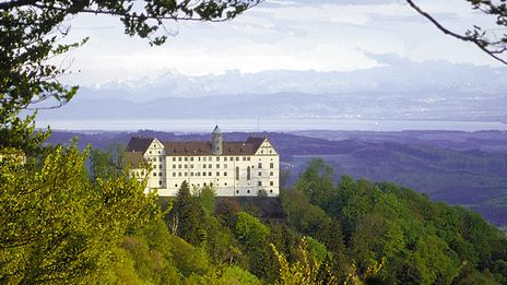 Schloss Heiligenberg | Der prachtvolle Rittersaal, der an Schönheit von keinem anderen Renaissancesaal nördlich der Alpen übertroffen wird, die Schlosskapelle, die zu den kostbarsten Sakralbauten im süddeutschen Raum zählt oder der Schlossinnenhof, der für Präsentationen unter freiem Himmel den perfekten Rahmen darstellt, bilden nur einen Teil der insgesamt sechs zur Verfügung stehenden Räumlichkeiten. Ob Firmenfeier oder Tagung, unser Schloss setzt jeden Event ganz außergewöhnlich in Szene.