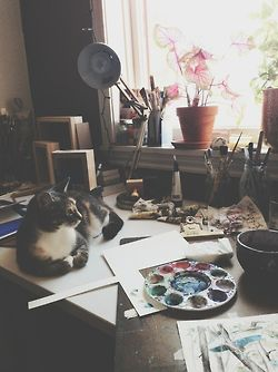 Art supplies, kitty, paint