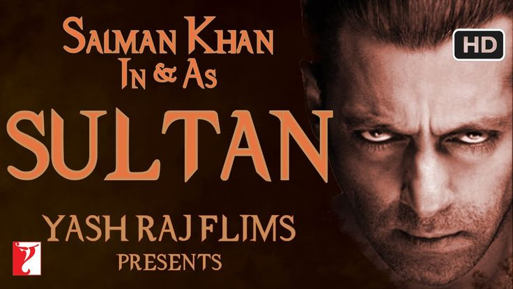 Sultan Grosses Over 530 Crores At The Worldwide Box Office