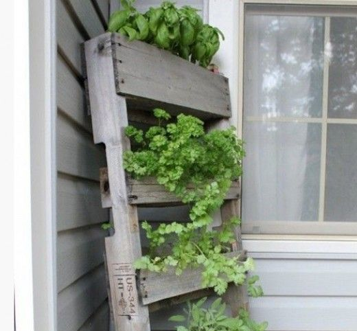 10 Simple Gardening Ideas