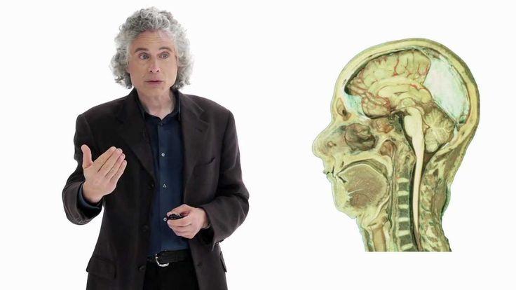 Steven Pinker- lingustics as a window to understanding the brain