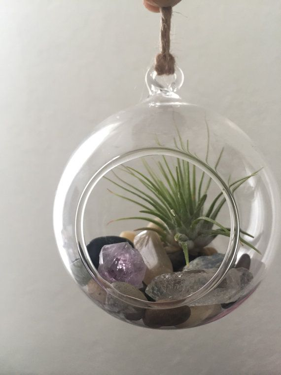 Hanging Crystal Terrarium // Air Plant Hanging by TheLunarFae