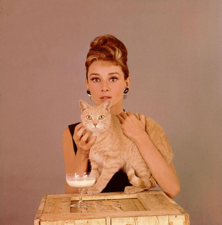 Breakfast at tiffanys, Audrey hepburn and Breakfast on Pinterest
