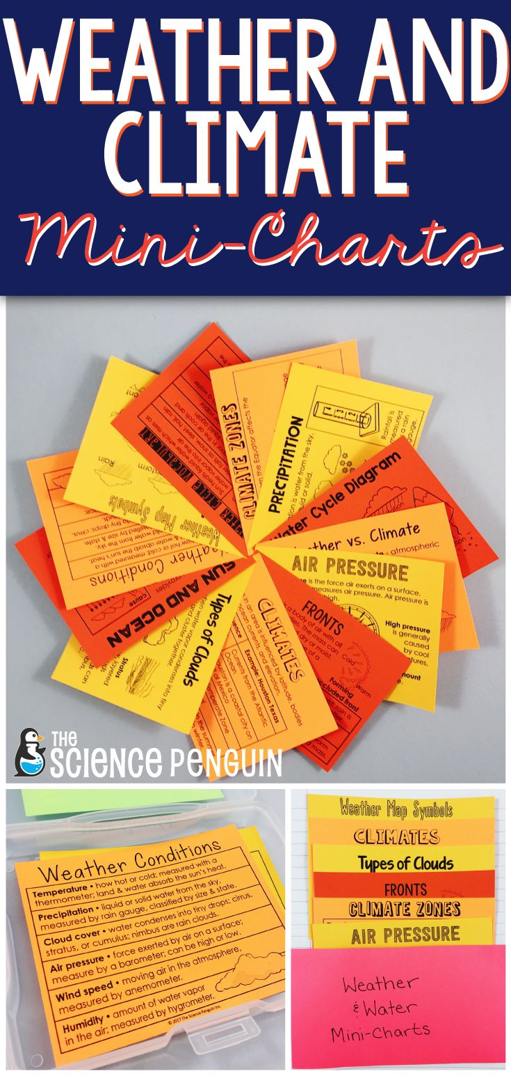 The Science Penguin Weather and Climate Mini-Charts topics include weather conditions, factors in climate, and the water cycle. Use for accommodations, absent students, interactive notebooks, and review.