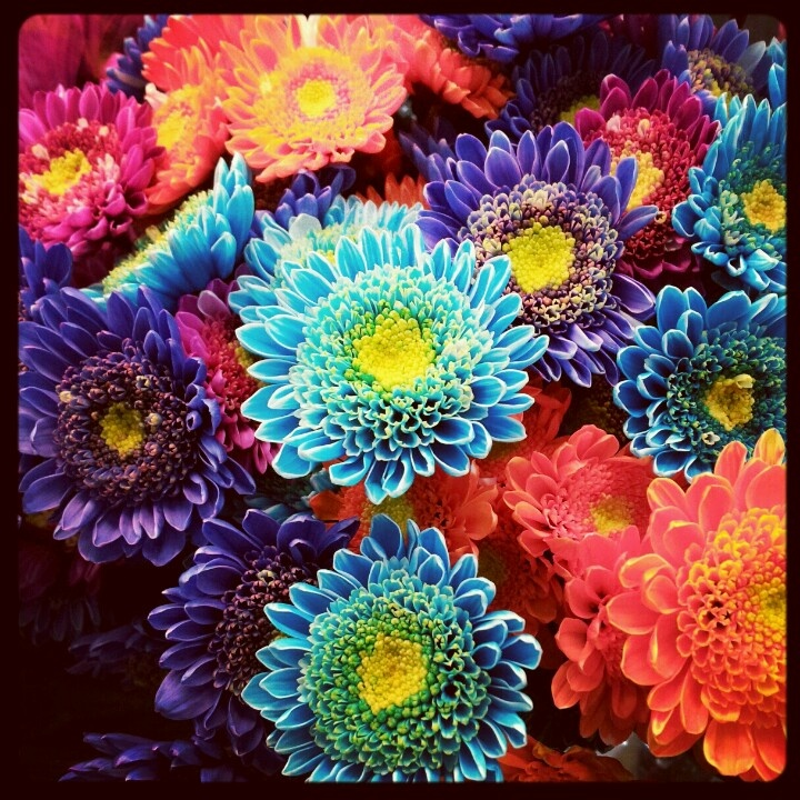 costco flowers centerpieces